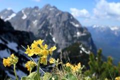 De berg van de lente Royalty-vrije Stock Afbeelding