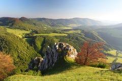 De berg van de lente in Slowakije stock foto