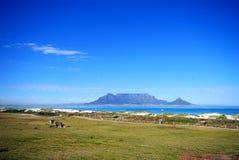 De berg van de lijst, Kaapstad Stock Afbeelding