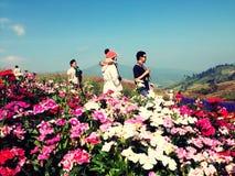 De berg van de Phukraan berk Royalty-vrije Stock Afbeeldingen
