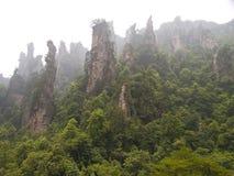 De berg van de rots in Zhangjiajie. stock foto's