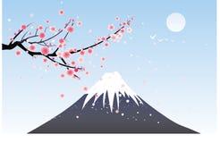 De berg van de sneeuw en kersenbloesem royalty-vrije illustratie