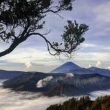 De Berg van de Vulkaan van Bromo Stock Foto