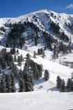 De berg van Dolomiti, trentino, Italië Royalty-vrije Stock Foto's