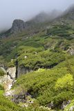 De Berg van Fagaras Royalty-vrije Stock Foto's