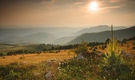 De Berg van Golija, Servië Stock Foto's