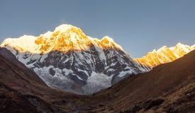 De berg van het Annapurnazuiden tijdens zonsopgang gouden uur met duidelijke blauwe hemel die door eerste zonneschijn worden gera royalty-vrije stock foto