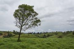 De berg van het landschap Royalty-vrije Stock Foto