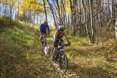 De berg van het paar het biking Stock Foto