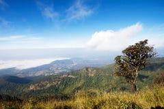 De berg van Intanon van Doi in een mistige ochtend royalty-vrije stock foto's