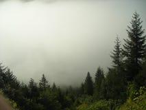 De berg van Kackar stock foto