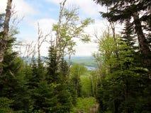 De berg van Lyon Royalty-vrije Stock Foto