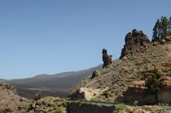 De berg van Tenerife, aard in de bergen, installaties Stock Afbeelding