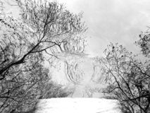 De Berg van Whiteside royalty-vrije stock foto's