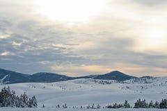 De berg van Zlatibor Stock Foto