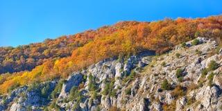 De bergcascade van de herfst Stock Afbeeldingen