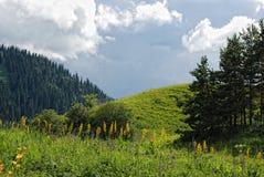 De bergen Alma Ata van Zailiyskialatau Stock Afbeeldingen