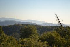 De Bergen Californië van San Jancinto Stock Afbeeldingen