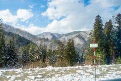 De bergen en de bomen zijn behandeld met sneeuw en wat sneeuw begint te smelten stock foto