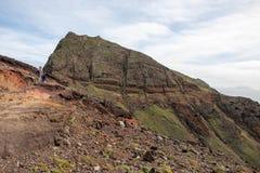 De bergen en de klippencactus van madera Stock Afbeelding