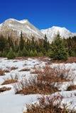 De bergen en de weiden van de winter stock foto