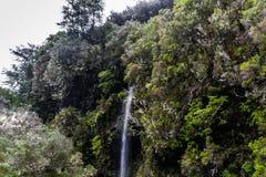 De Bergen en de waterval van madera Royalty-vrije Stock Afbeelding