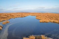 De bergen nationaal park van Wicklow Royalty-vrije Stock Foto
