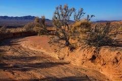De bergen van de woestijn in Kazachstan Stock Foto