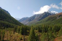 De Bergen van Altai Stock Foto's