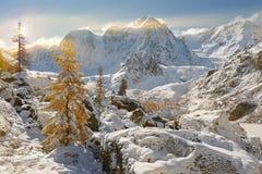 De Bergen van Altai stock fotografie