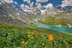 De Bergen van Altai Royalty-vrije Stock Afbeeldingen