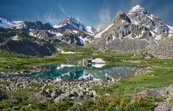 De Bergen van Altai Stock Foto
