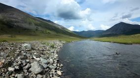 De Bergen van Altai Rivier Dara Mooi hooglandlandschap Rusland siberië stock footage