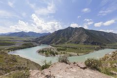 De Bergen van Altai De rivier van Katun stock foto's