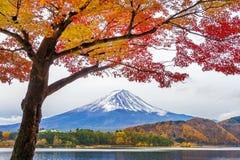 De bergen van Autumn Season en Fuji-bij Kawaguchiko-meer, Japan stock foto's