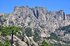 De bergen van Bavella Royalty-vrije Stock Foto