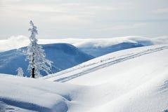 De bergen van Beskydy in de winter stock afbeelding