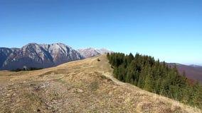 De bergen van Bucegi stock footage