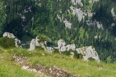 De bergen van Bucegi Royalty-vrije Stock Foto
