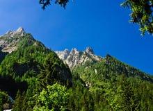 De Bergen van Bucegi, Roemenië Royalty-vrije Stock Foto's
