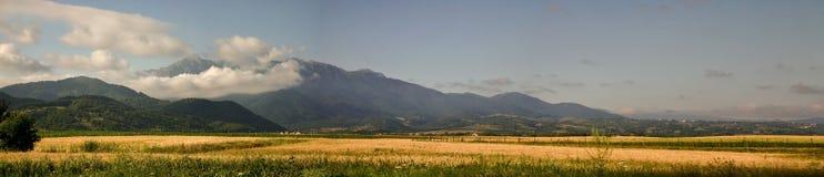 De bergen van Bucegi Stock Fotografie