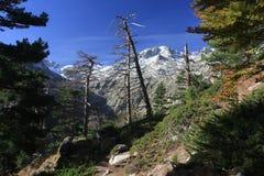 De bergen van Corsica, GR20 sleep Stock Afbeeldingen
