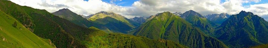 De bergen van de Kaukasus met paardenpanorama stock foto