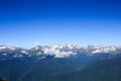 De bergen van de Kaukasus met sneeuw altijdgroen bos onder blauwe hemel worden behandeld die royalty-vrije stock foto