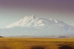 De bergen van de Kaukasus van Elbrus Stock Afbeelding