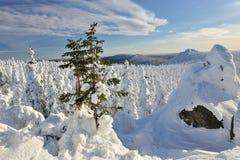 De bergen van de winter Stock Fotografie
