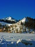 De Bergen van de Winter van Colorado Royalty-vrije Stock Foto