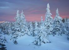 De bergen van de winter Zuiden Ural, backbone van stock afbeelding