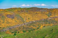 De bergen van Edinburgh - Arthur Seat, de Steile rotsen van Salisbury royalty-vrije stock foto's