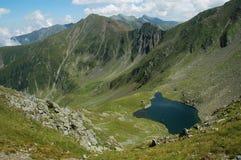 De bergen van Fagaras, de Zuidelijke Karpaten, Roemenië stock fotografie